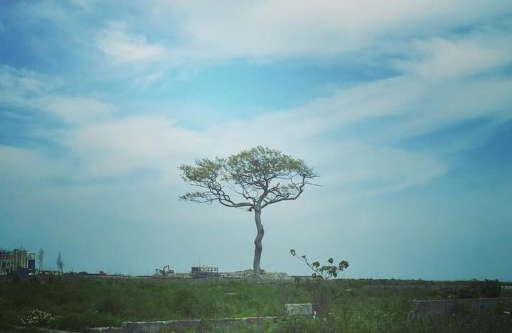 福島ラーニング・ジャーニー2016 〜震災から6年目の福島とつながる旅〜