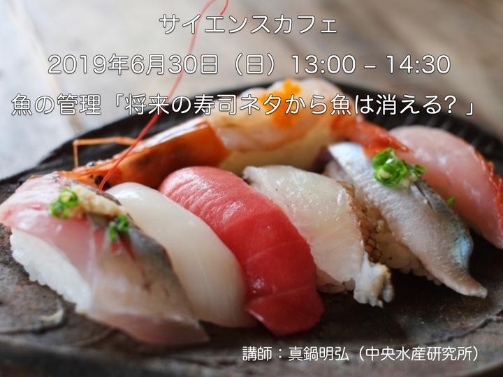 将来の寿司ネタから魚は消える?〜水産資源の現状〜  (講師:真鍋明弘,中央水産研究所)「サイエンスカフェ −まだわかっていないこと−」