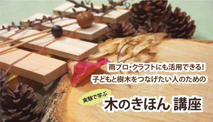 低学年・理科の先生におすすめ…植物や森林を実験・体験ワークショップで学ぶ 木のきほん 講座 8/31 @横浜