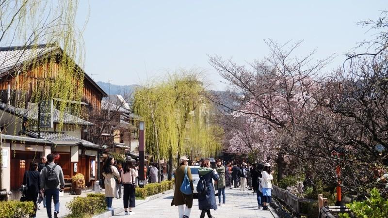 Shirakawa River in Gion
