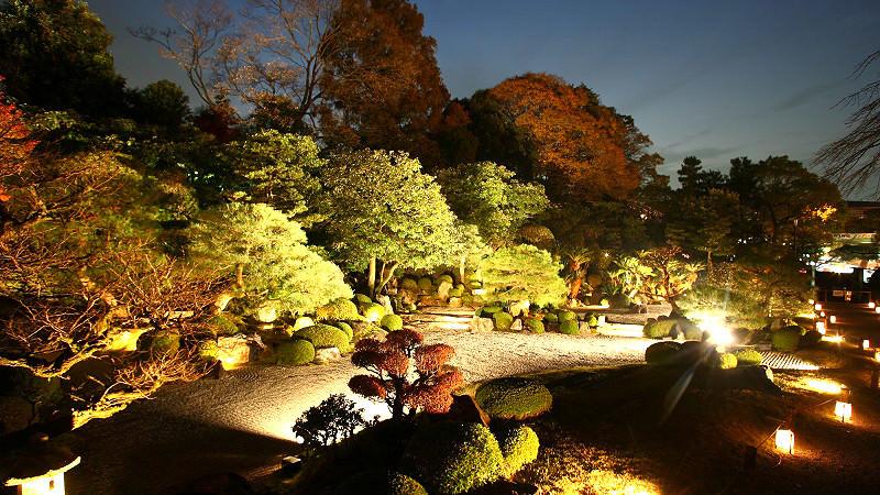 Yuzenen Garden's illumination