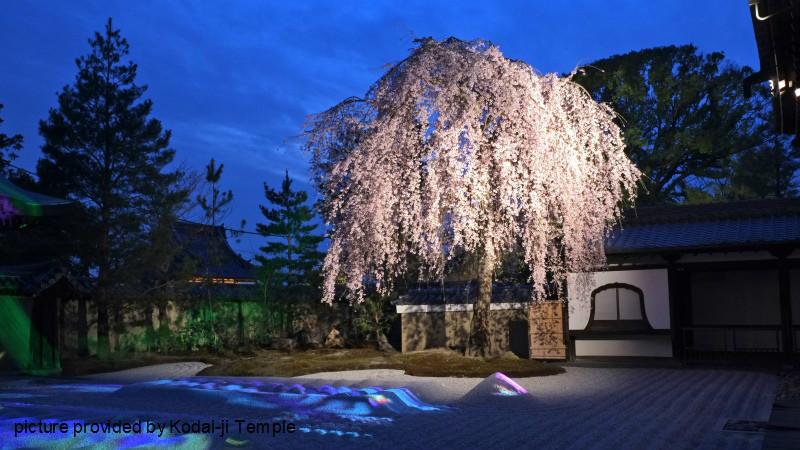 Spring illumination