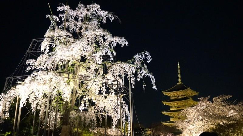 東寺夜間點燈