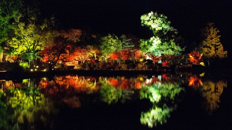 Illumination of Osawa-no-ike Pond