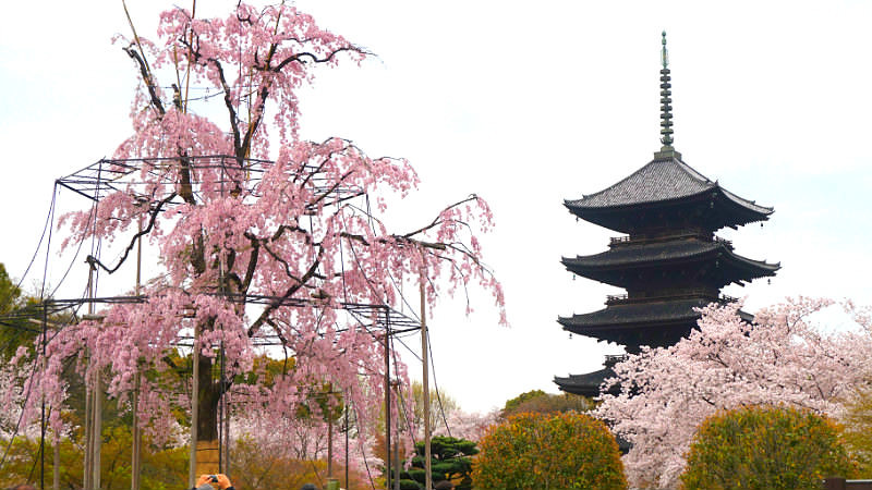 Five-storied Pagoda of To-ji Temple