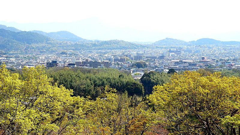 在下坡路段俯瞰京都的城市風光
