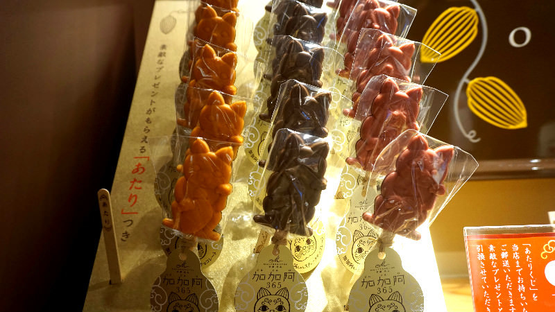 Cacao-chan 巧克力棒棒糖
