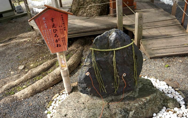 從鐵餅 (Suehirogane) 汲取能量