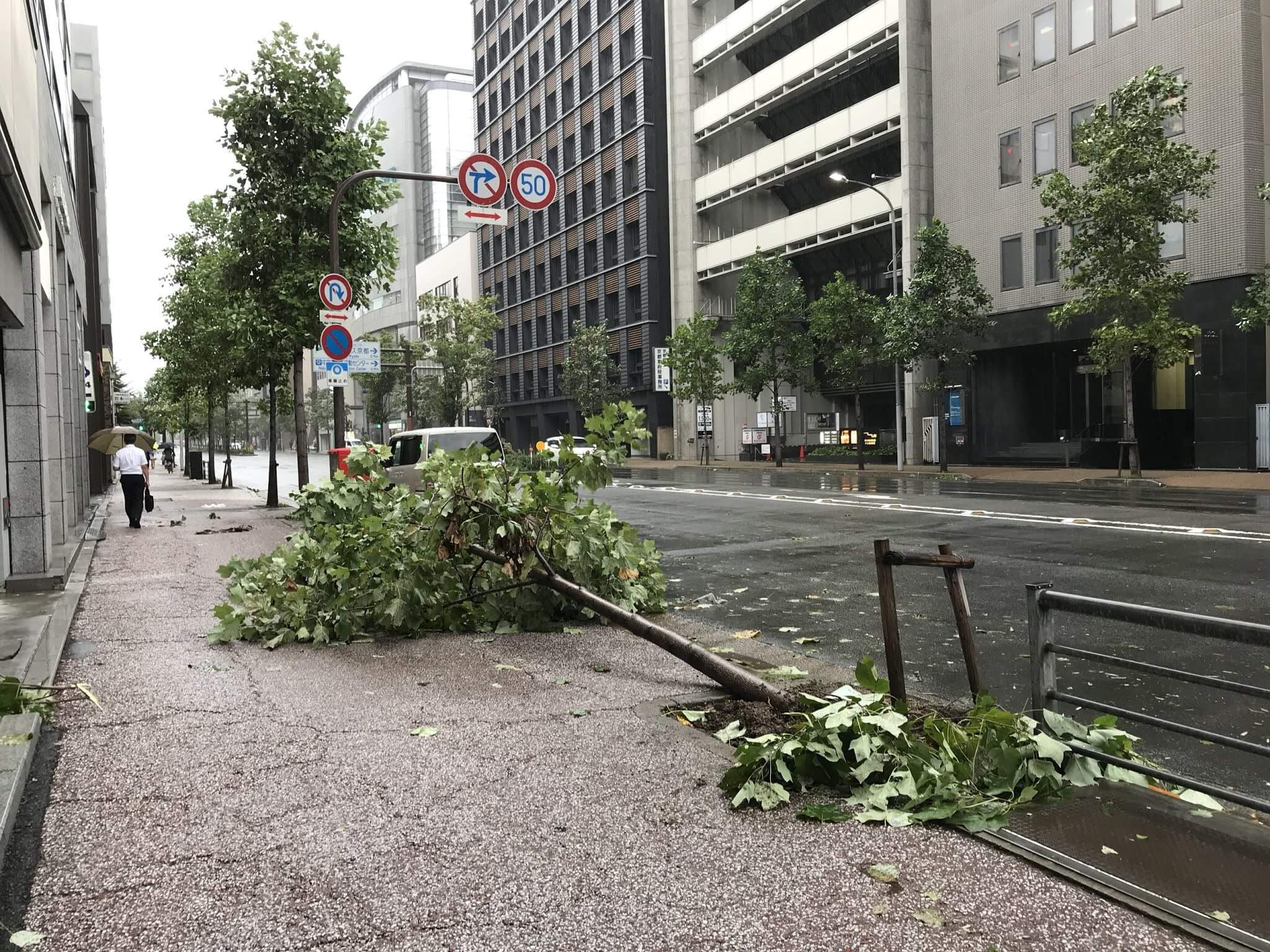 Typhoon Jebi (Typhoon No. 21) hits kyoto!Please stay inside and ensure your safety.
