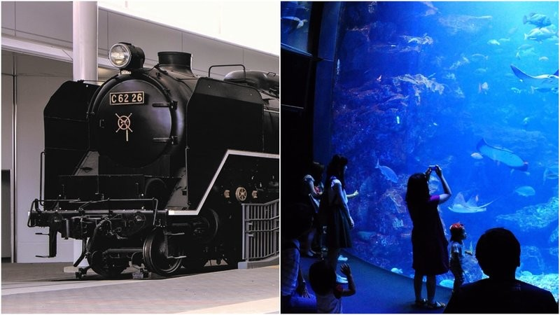 Kyoto Railway Museum and Kyoto Aquarium