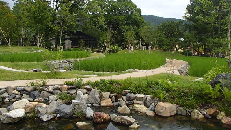 Kyoto-no-mori
