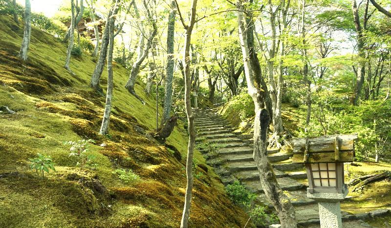 Strolling on Sueyoshi slope