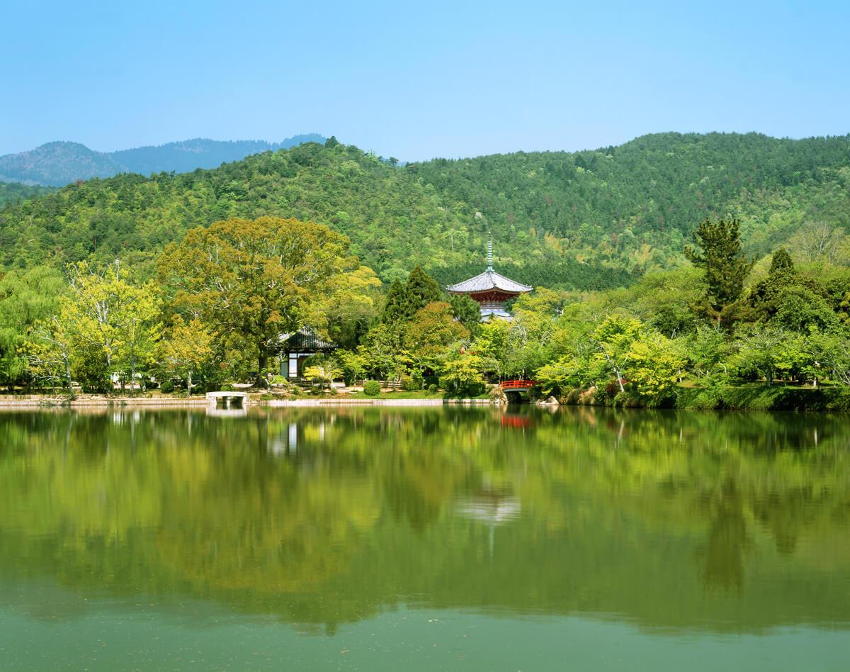 Osawa-no-ike (pond)