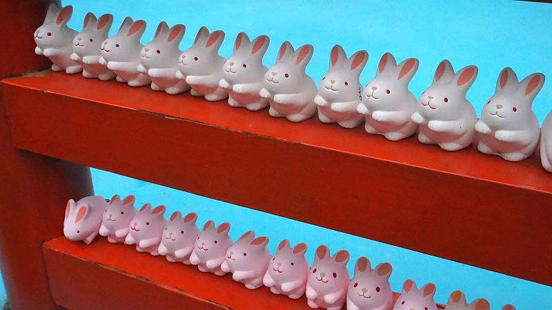 Buy a bunny fortune slip
