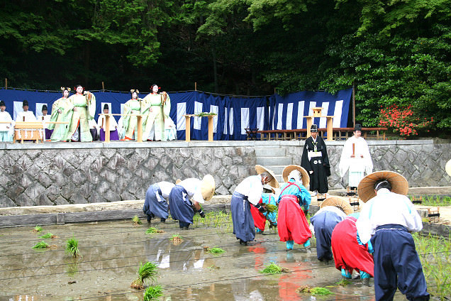 Otamai, a special dance offering, and rice planting