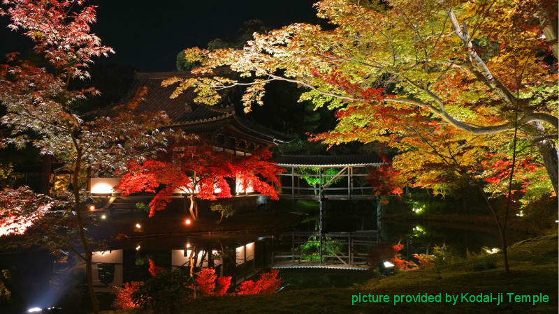 Autumn illumination
