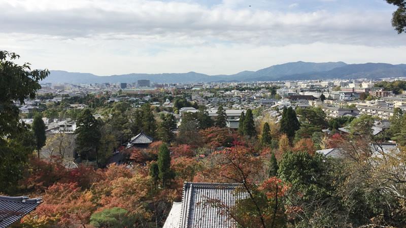 欣賞從多寶塔往下看去的壯觀景致