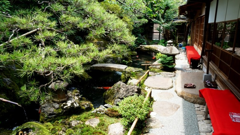 Japanese garden and the carps