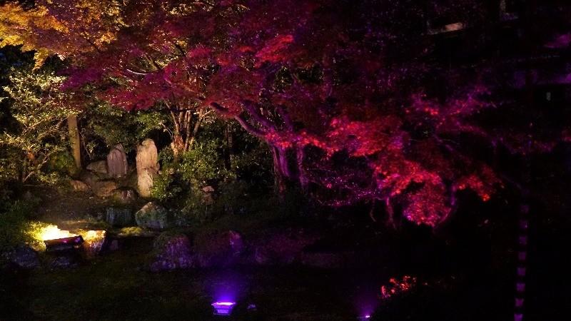 Mitsudomoe no Niwa