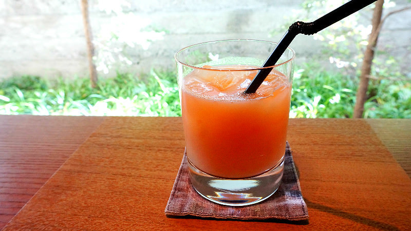 Seasonal Fresh Fruit Juice