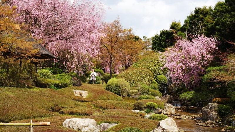 石庭的白砂和庭園
