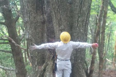 井川森林組合