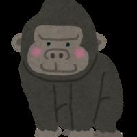 IkuroYamaguchi