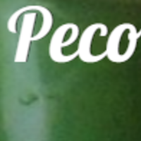 Peco[REFLECTION]