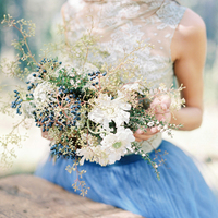 WP_Dress