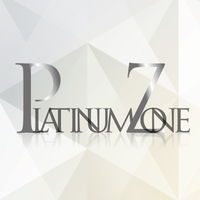 PLATINUM ZONE LTD.