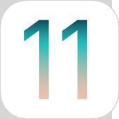 mineo (マイネオ)、iOS 11での動...