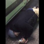 「飲み物を選ぶ藤原竜也」動画が急沸騰