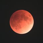国立天文台、皆既月食の写真を次々にアップロード。セガなども写真をアップ