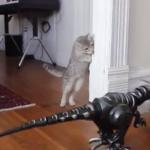 ネコ vs 恐竜ロボット