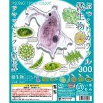 【誰得?】微生物アクリルマスコットが発売。理科の教科書に出てきた微生物がアクリルマスコットに