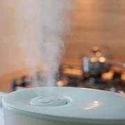 おしゃれな加湿器なら超音波式を。お手入れ方法&おすすめモデル8選 | Smartlog