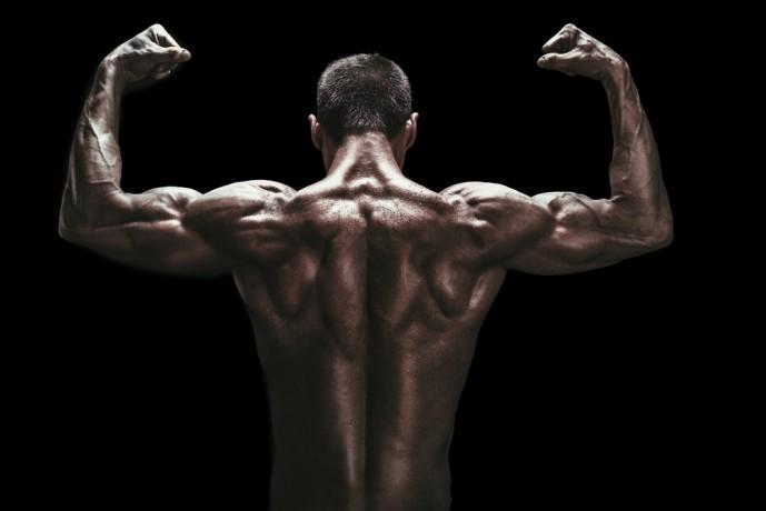 モテる筋肉 背筋