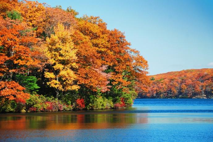 秋の紅葉デート
