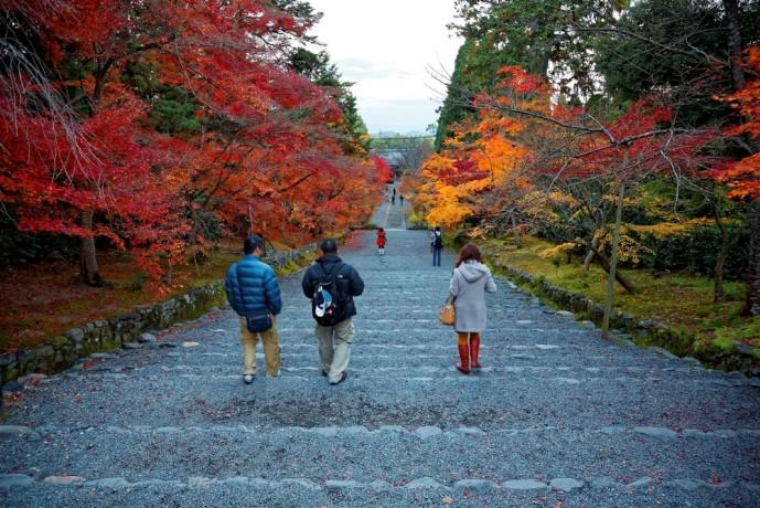 京都の二尊院で紅葉デート