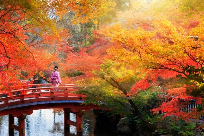 東山で魅惑の紅葉デート