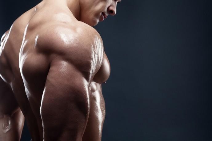 モテる筋肉 上腕二頭筋