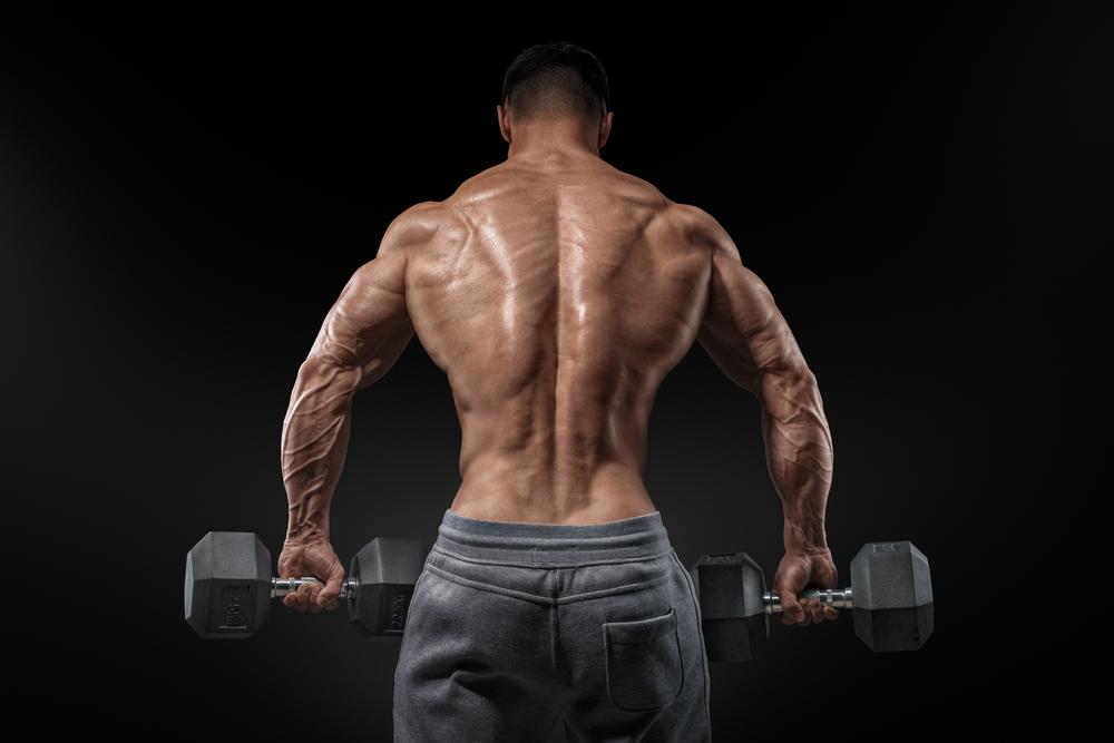 背筋の鍛え方 筋トレ
