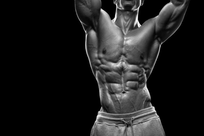 筋肉を部位に分けて考える