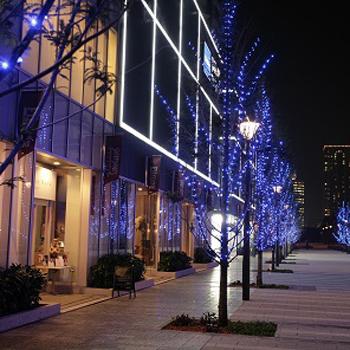 横浜のクリスマスディナー