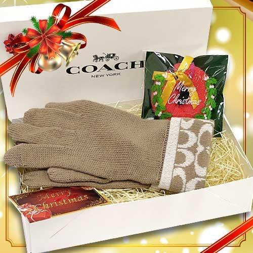 予算一万円で彼女のクリスマスプレゼントに贈りたいコーチの手袋