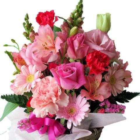 母の日と父の日のペアギフトに贈りたいのは花