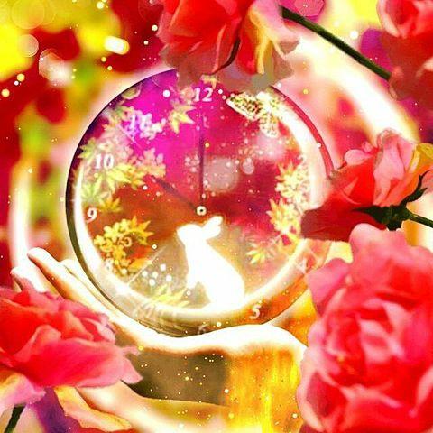 (*´ー`*) ♡桜兎.*.˚❀✿