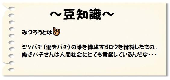 ノンノ(ブログ用)④