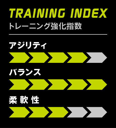 TRAINING INDEX