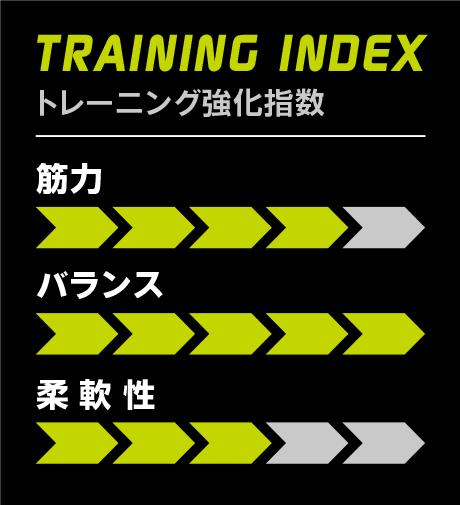 TRAINING INDEX